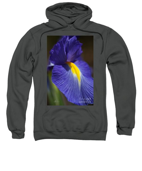 Blue Iris With Yellow Sweatshirt