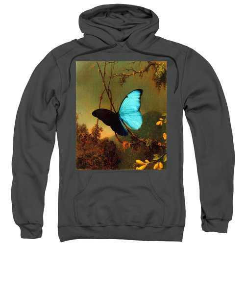 Blue Morpho Butterfly Sweatshirt