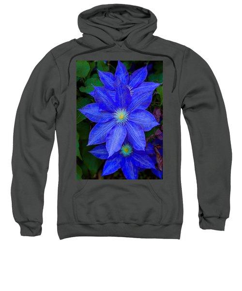 Blue On Blue Sweatshirt