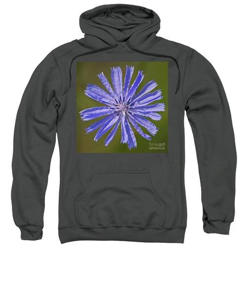 Blue Star... Sweatshirt