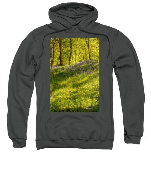 Bluebell Flowers Sweatshirt