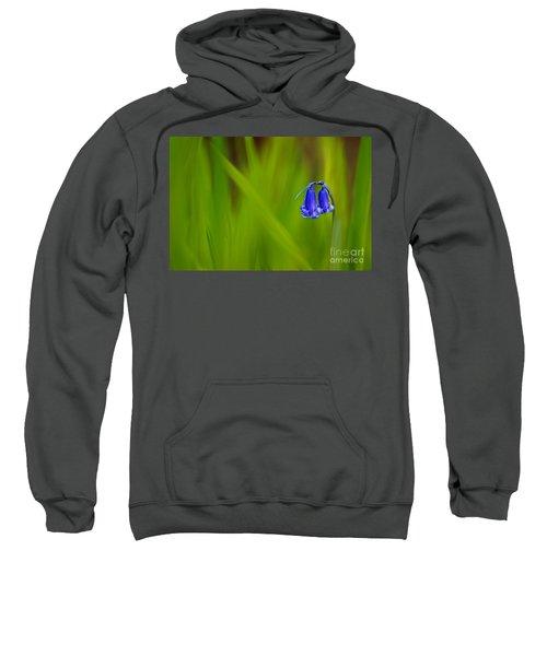 Bluebell Sweatshirt