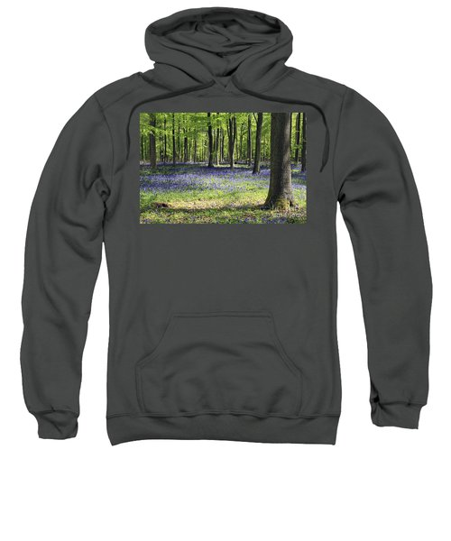 Bluebell Wood Uk Sweatshirt
