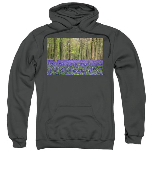 Bluebells Surrey England Uk Sweatshirt