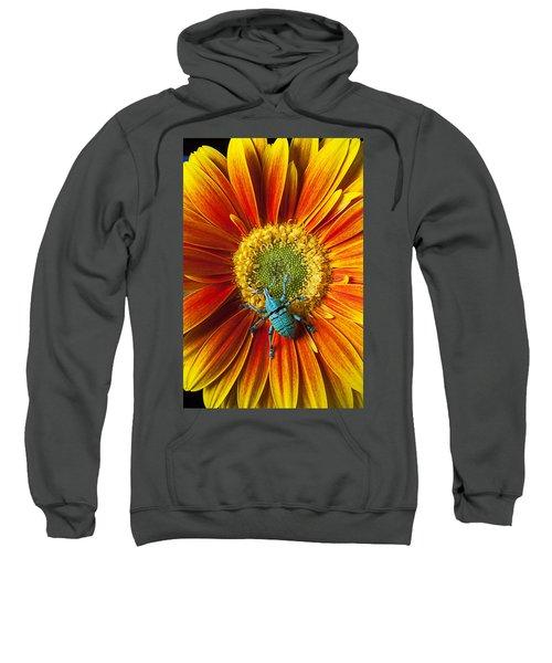 Boll Weevil On Mum Sweatshirt