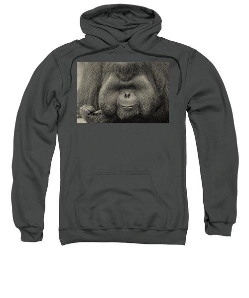 Bornean Orangutan II Sweatshirt by Lourry Legarde