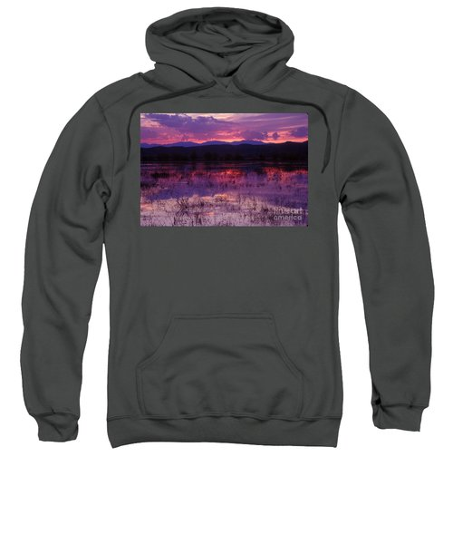 Bosque Sunset - Purple Sweatshirt