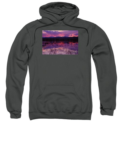 Bosque Sunset - Purple Sweatshirt