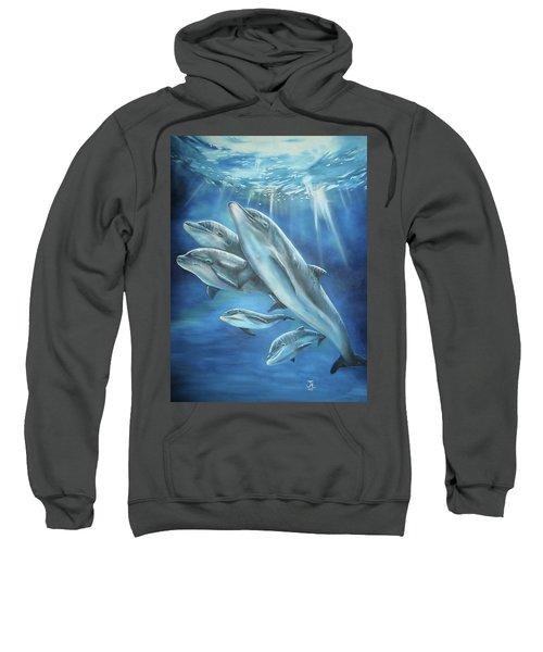 Bottlenose Dolphins Sweatshirt
