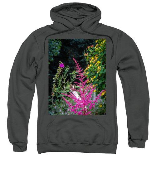 Brilliant Astilbe In Markree Castle Gardens Sweatshirt