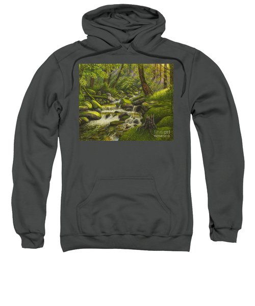 Brook In The Forest Sweatshirt