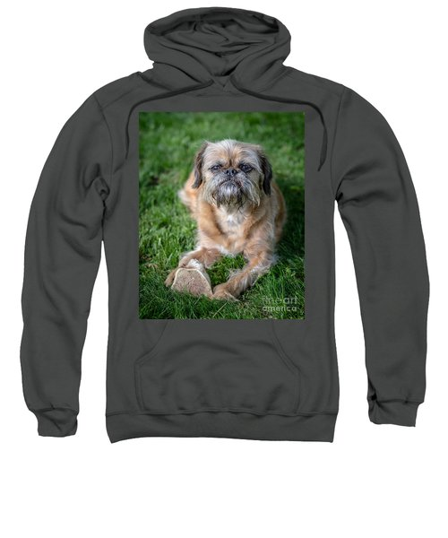 Brussels Griffon Sweatshirt by Edward Fielding