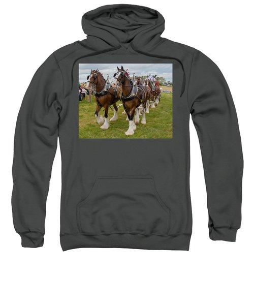 Budweiser Clydesdales Sweatshirt