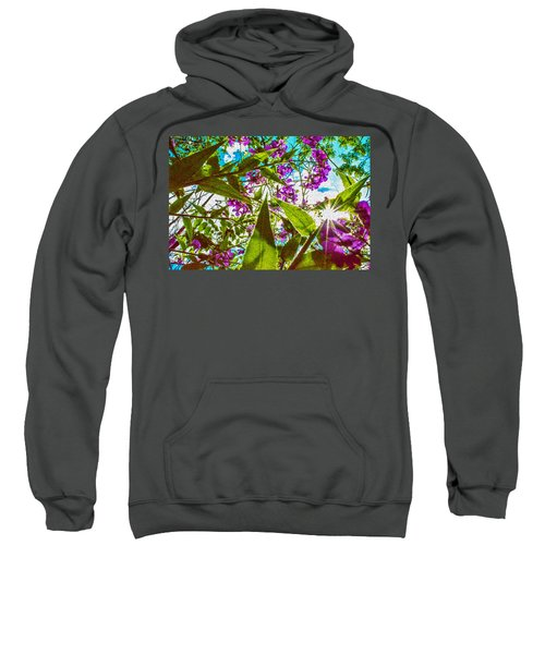 Bugs View Sweatshirt