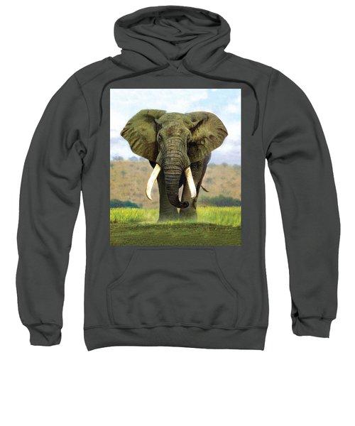 Bull Elephant Sweatshirt