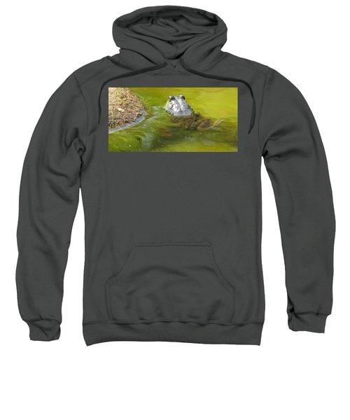 Bullfrog Heading Out Sweatshirt