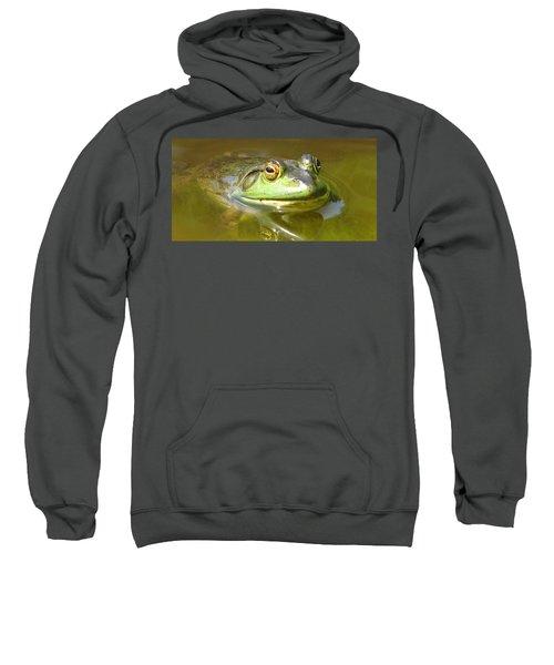 Bullfrog Profile View Sweatshirt