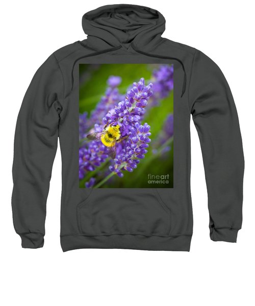 Bumble Bee And Lavender Sweatshirt