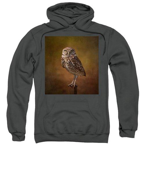 Burrowing Owl Portrait Sweatshirt