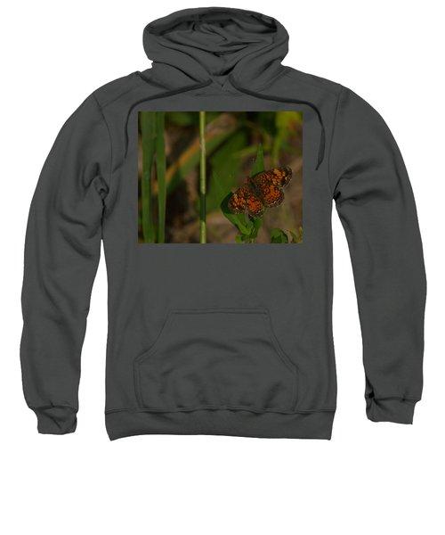 Butterfly 10 Sweatshirt