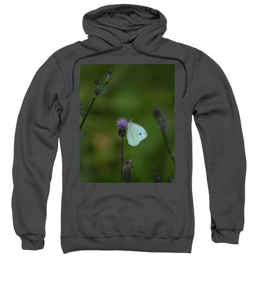Butterfly In White 2 Sweatshirt