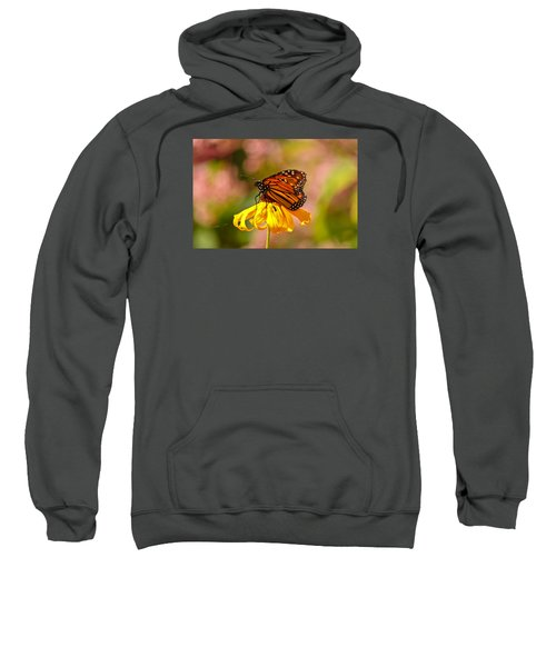 Butterfly Monet Sweatshirt