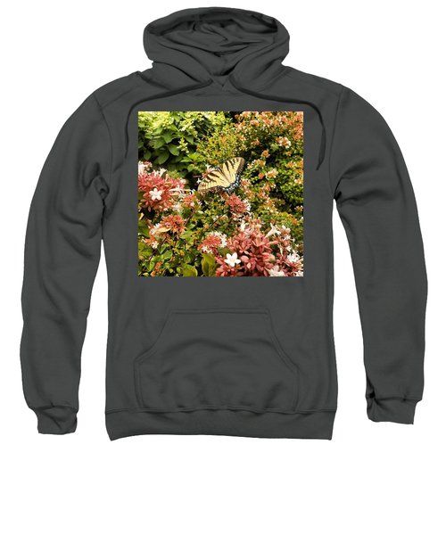 Butterfly...... Open Your Wings And Fly Sweatshirt