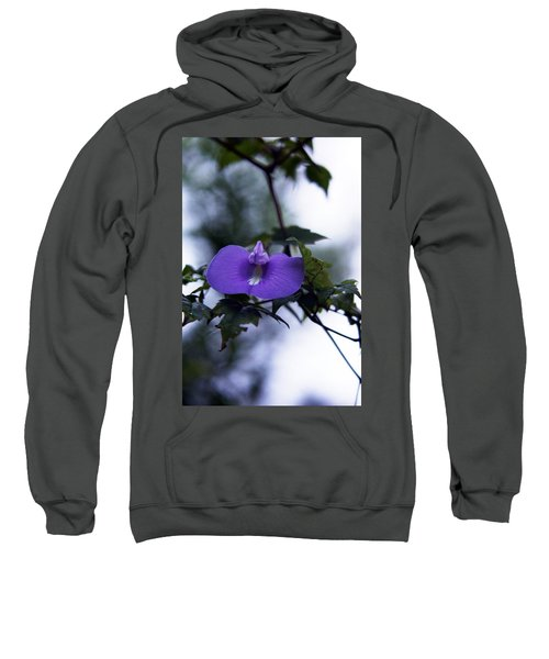 Sweatshirt featuring the photograph Butterfly Pea Flower by Kim Pate