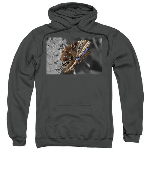 Butterfly Spot Color 1 Sweatshirt