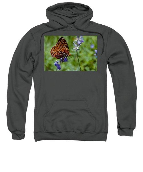 Butterfly Visit Sweatshirt