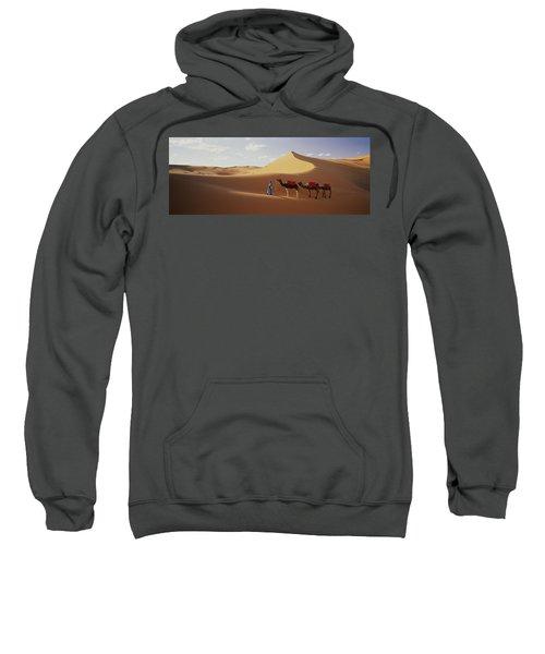 Camels In Desert Morocco Africa Sweatshirt