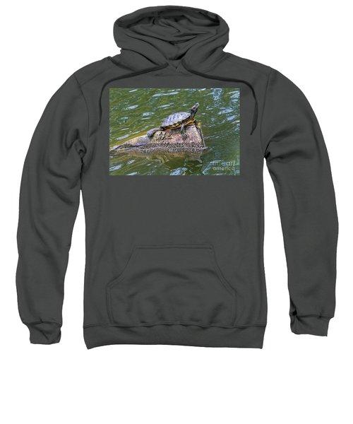 Captain Turtle Sweatshirt