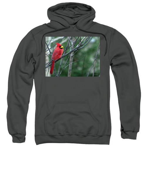 Cardinal West Sweatshirt