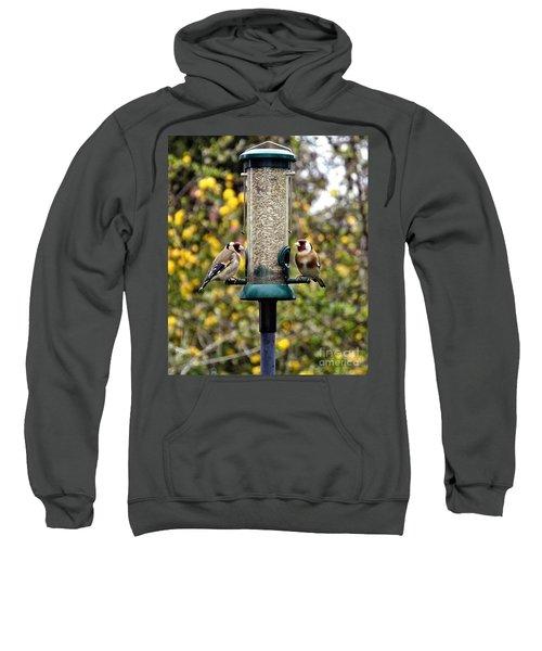 Carduelis Carduelis 'goldfinch' Sweatshirt