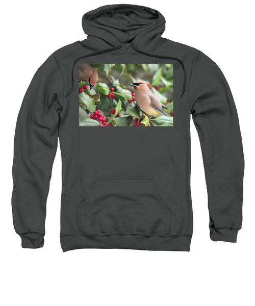 Cedar Waxwing In Holly Tree Sweatshirt