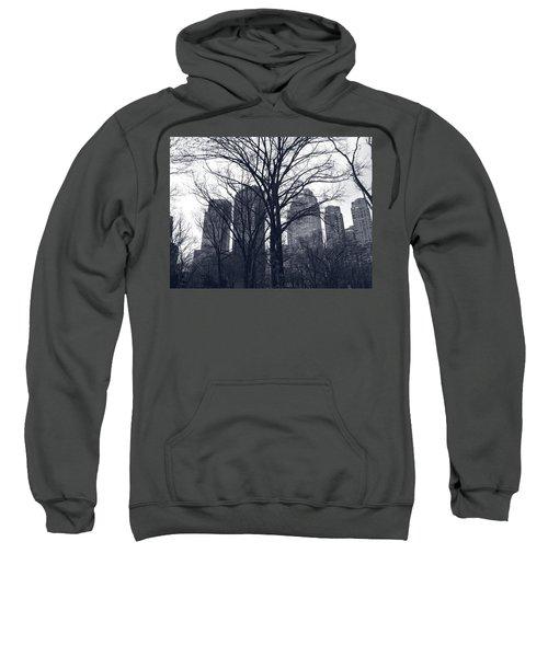 Central Park In New York Sweatshirt