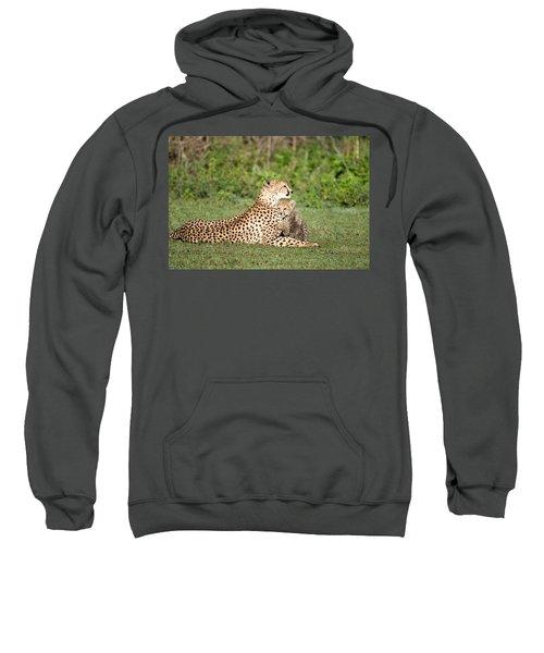 Cheetah Cub Acinonyx Jubatus Playing Sweatshirt