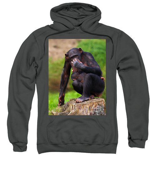 Chimp With A Baby On Her Belly  Sweatshirt