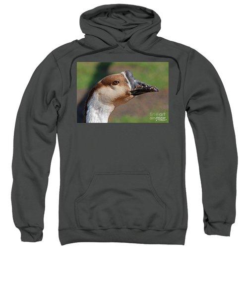 Chinese Watchdog Sweatshirt