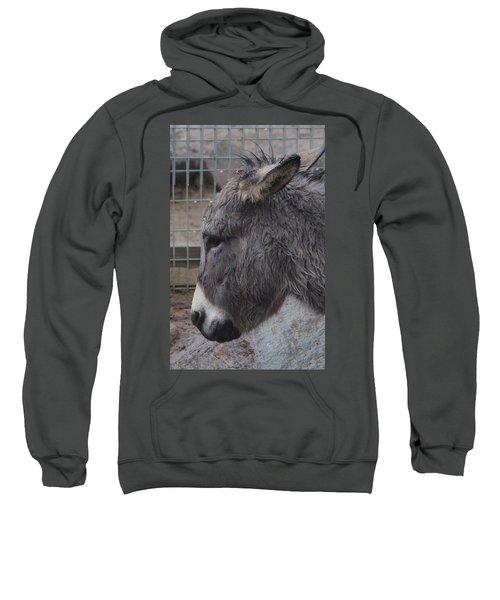 Christmas Donkey Sweatshirt