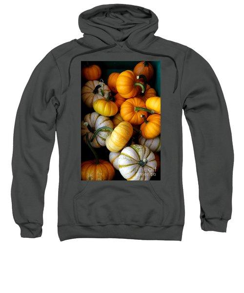 Cinderella Pumpkin Pile Sweatshirt