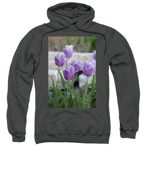 City Dreams Sweatshirt
