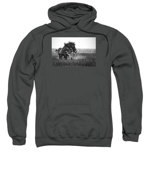 Clash Of Two Wild Stallions Sweatshirt
