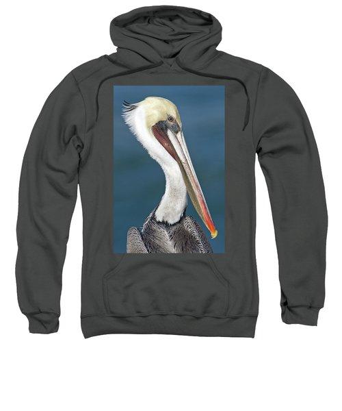 Close-up Of A Brown Pelican Pelecanus Sweatshirt