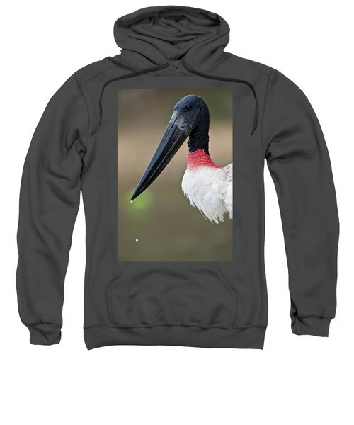 Close-up Of A Jabiru Stork Jabiru Sweatshirt