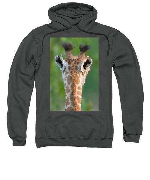 Close-up Of A Masai Giraffe, Lake Sweatshirt