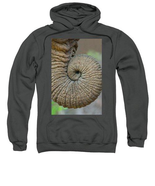 Close-up Of An African Elephants Trunk Sweatshirt
