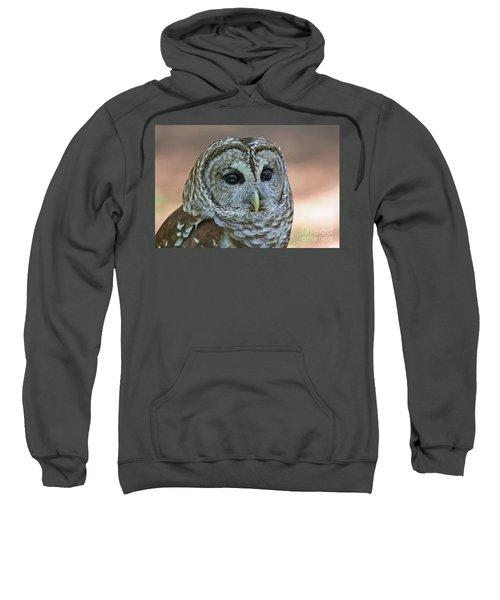 Closeup Of A Barred Owl  Sweatshirt