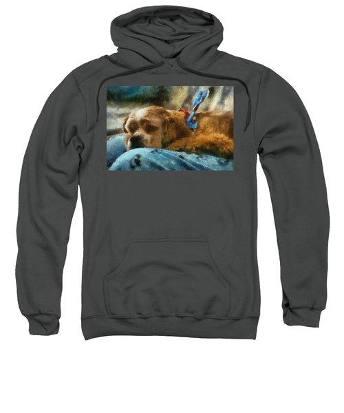 Cocker Spaniel Photo Art 07 Sweatshirt by Thomas Woolworth