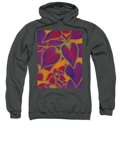 Coleus Gone Wild Sweatshirt